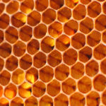 Gangbare Honing
